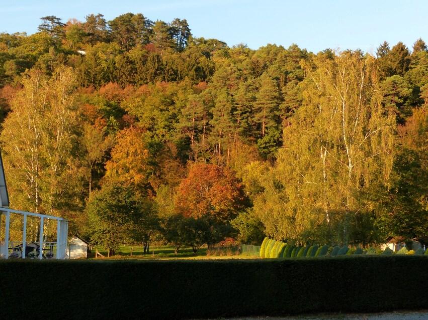 Quelle est belle ma vallée en automne!