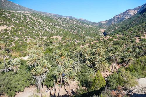 Agadir  - La vallée du ¨Paradis