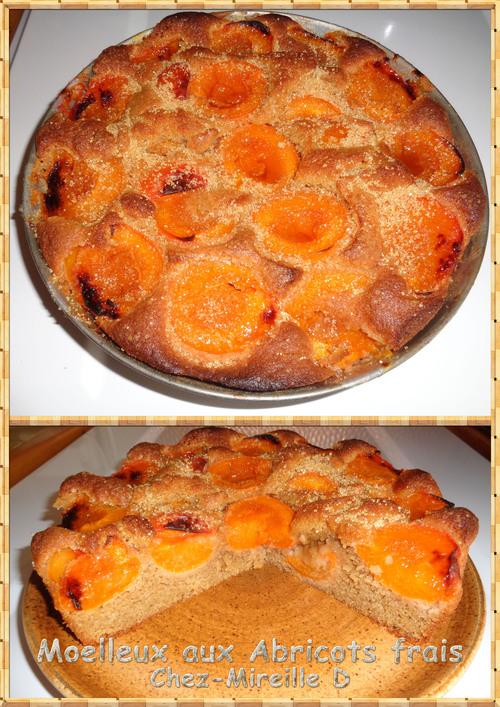 Gâteau Moelleux aux Abricots frais