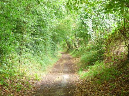 Le chemin du Gibet
