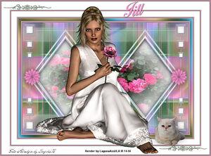 Variante Jill