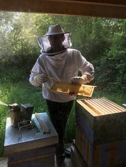 Visite au rucher didactique d'Erpent