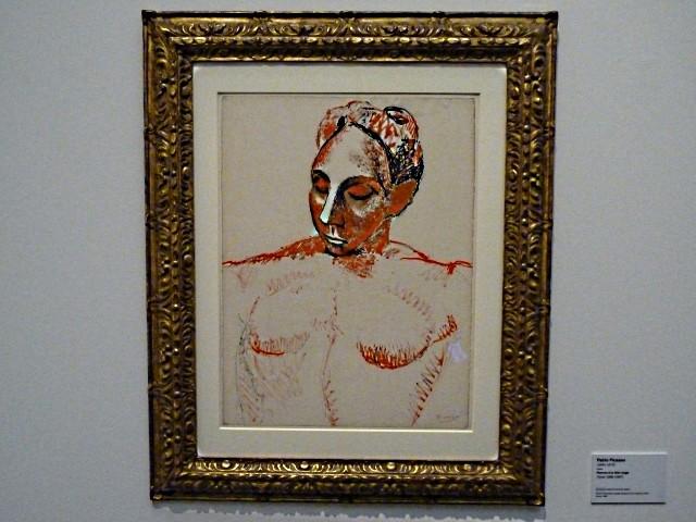 Metz CPM la Dame rouge de Picasso 4 mp13 2010