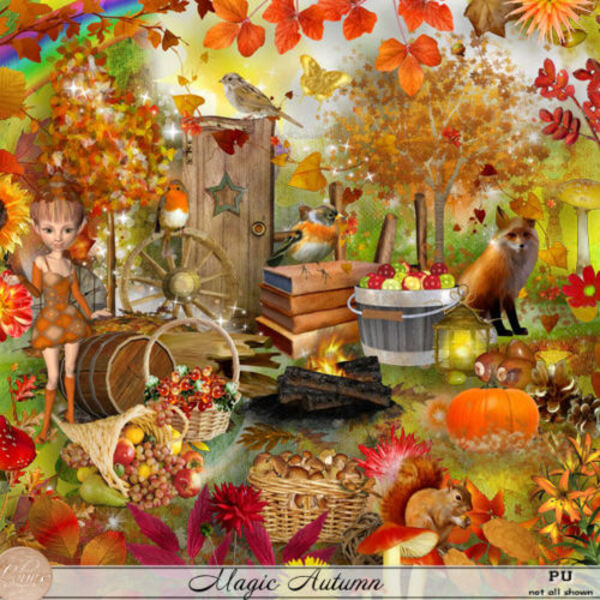 Magic Automne de louise