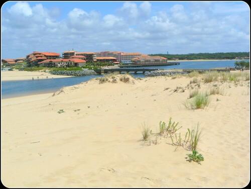 Les dunes de Vieux-Boucau