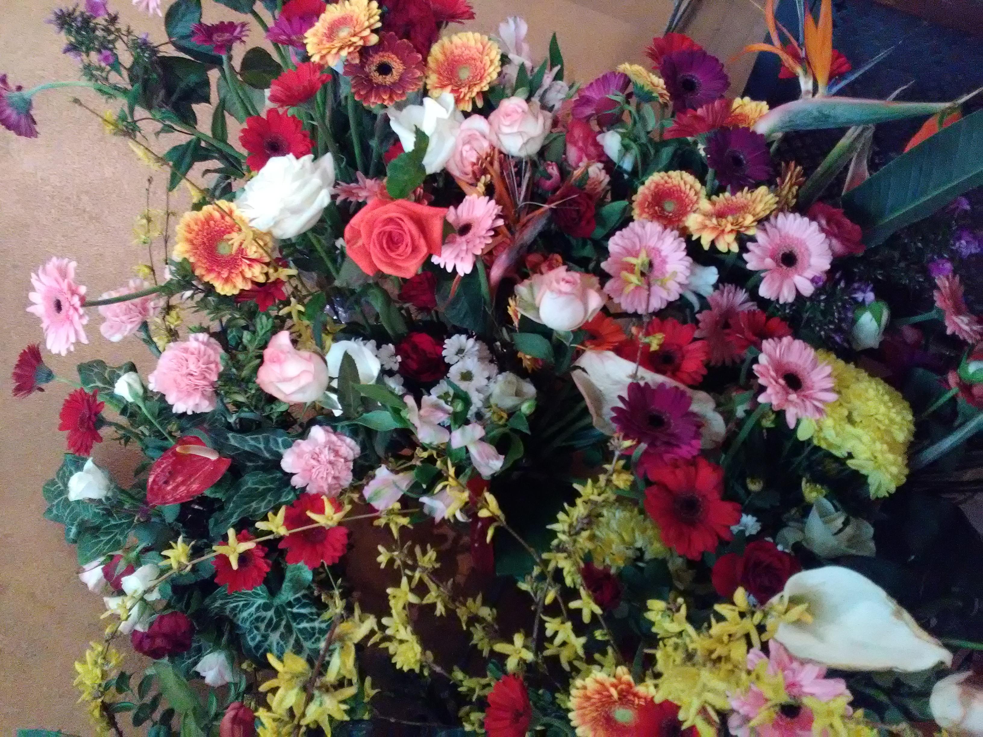 Fleur D Avril Le Monde De La Philo Et De La Poesie