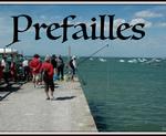 Prefailles - Loire-Atlantique (44 )