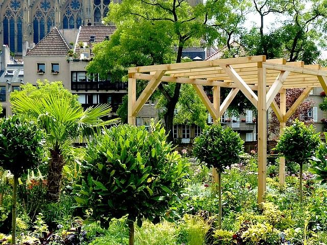 Metz un jardin en chantier 29 Marc de Metz 31 07 2012