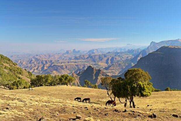 Le mont Balé en Ethiopie