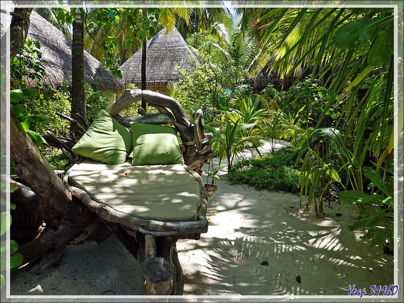 Espaces de farniente - Moofushi - Atoll d'Ari - Maldives