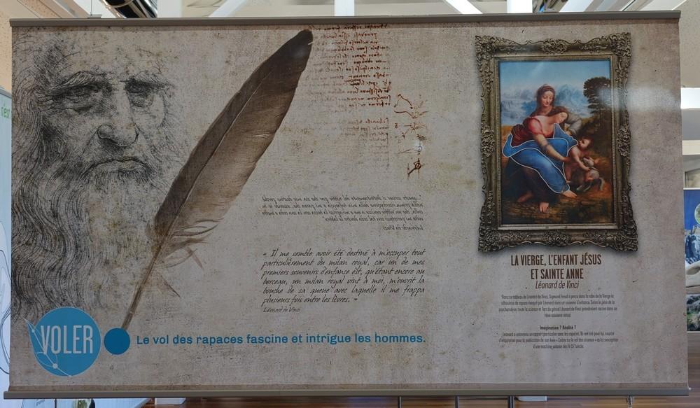 """Exposition """"Becs et ongles"""" au Domaine de Certes et Graveyron à Audenge..."""