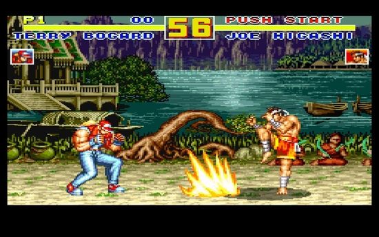 Fatal Fury Special s