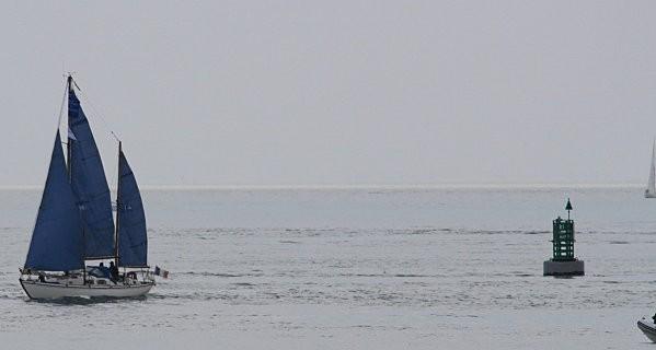 Voiles d'Estuaire Royan mai 2010(8)