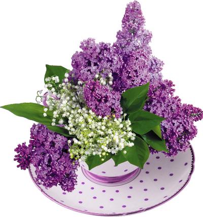 muguet lilas