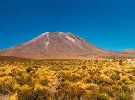 Volcán Láscar: bajó la sismicidad pero continúa la alerta amarilla ...