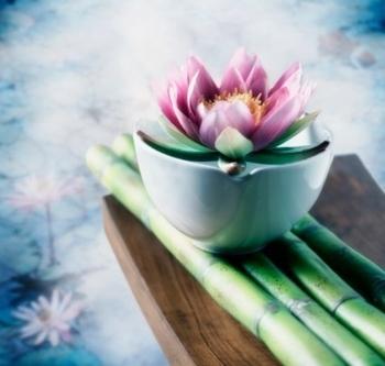 massage - images de bambous et de fleurs