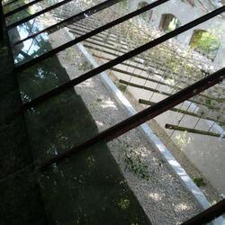 reflets dans la vitre
