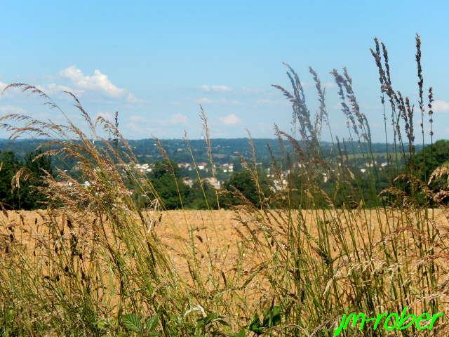 Une sortie vélo au couleur de l'été avec un beau et chaud soleil
