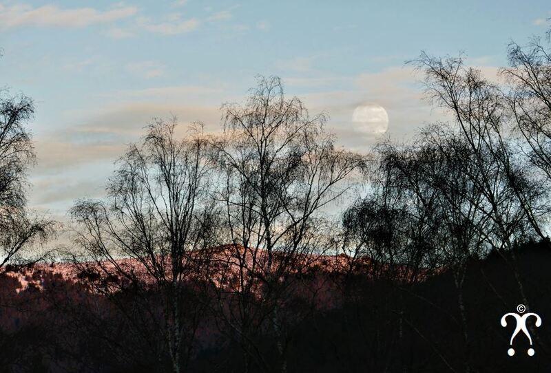La joueur de lune