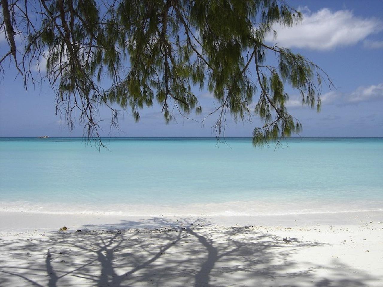 J'ai habité 4 années durant, la belle ile de La Réunion ...