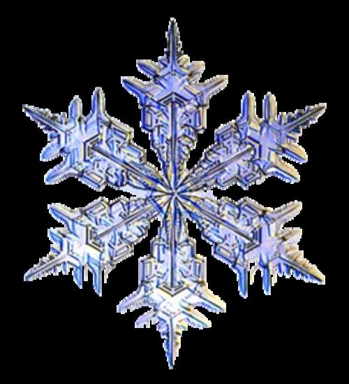 Le flocon de neige