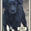 John L 1