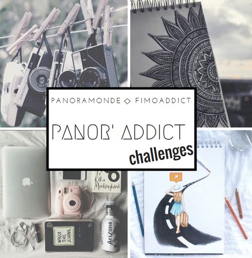 Annonce_ Collab' Panor'Addict !
