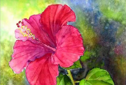 Dessin et peinture - vidéo 2321 : Comment peindre l'hibiscus rouge à l'aquarelle ? 3.