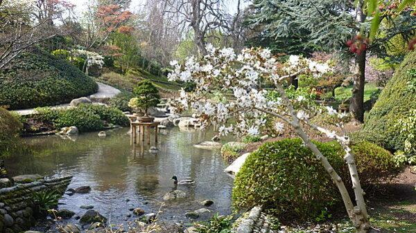 Jardins Albert Kahn 119