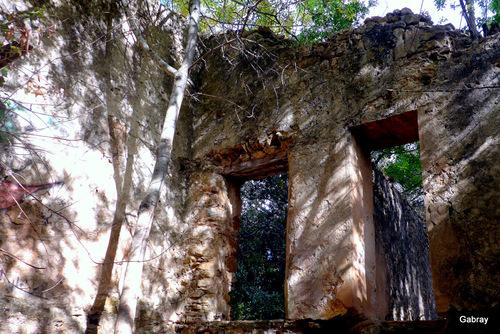Le vieux moulin de Ribaute