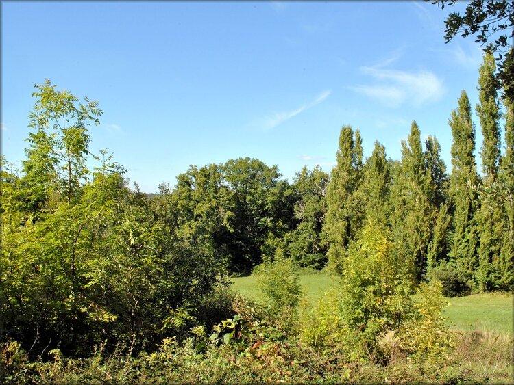 Paysages de Saint-André-du-Bois en Gironde