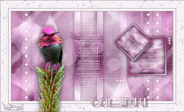 Colibri de Animabelle