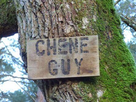 Le circuit des deux Chesnay