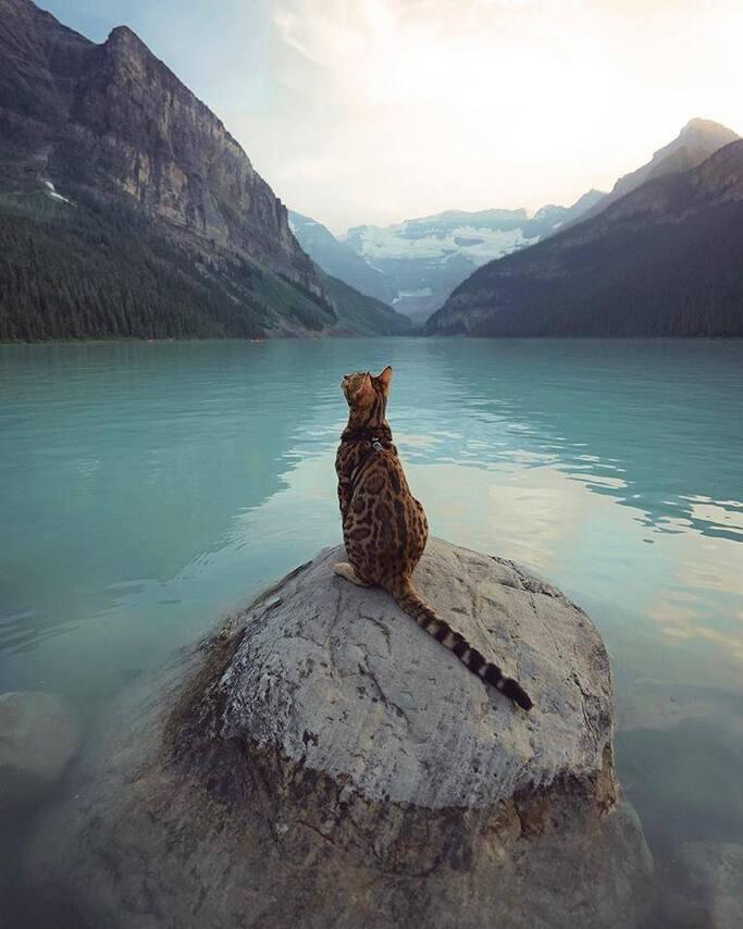 L'image contient peut-être: ciel, montagne, plein air, nature et eau