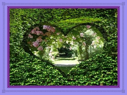 Le jardin de mon coeur