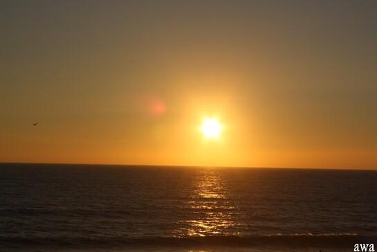 Lacanau océan juillet 2015