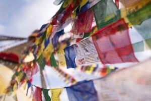 Sagesse bouddhiste
