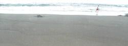 Vincendo et sa plage de sable noir
