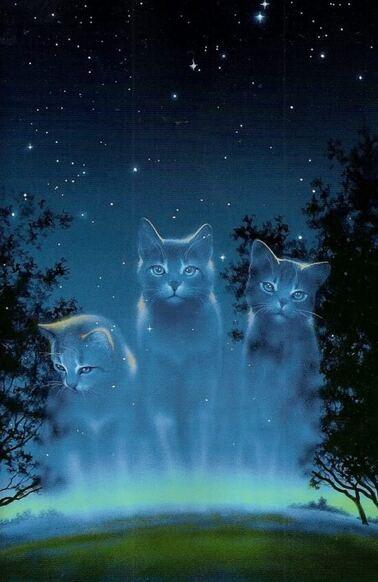 Des chats du Clan des Étoiles