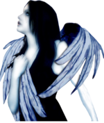 PNG képek: Angyalok
