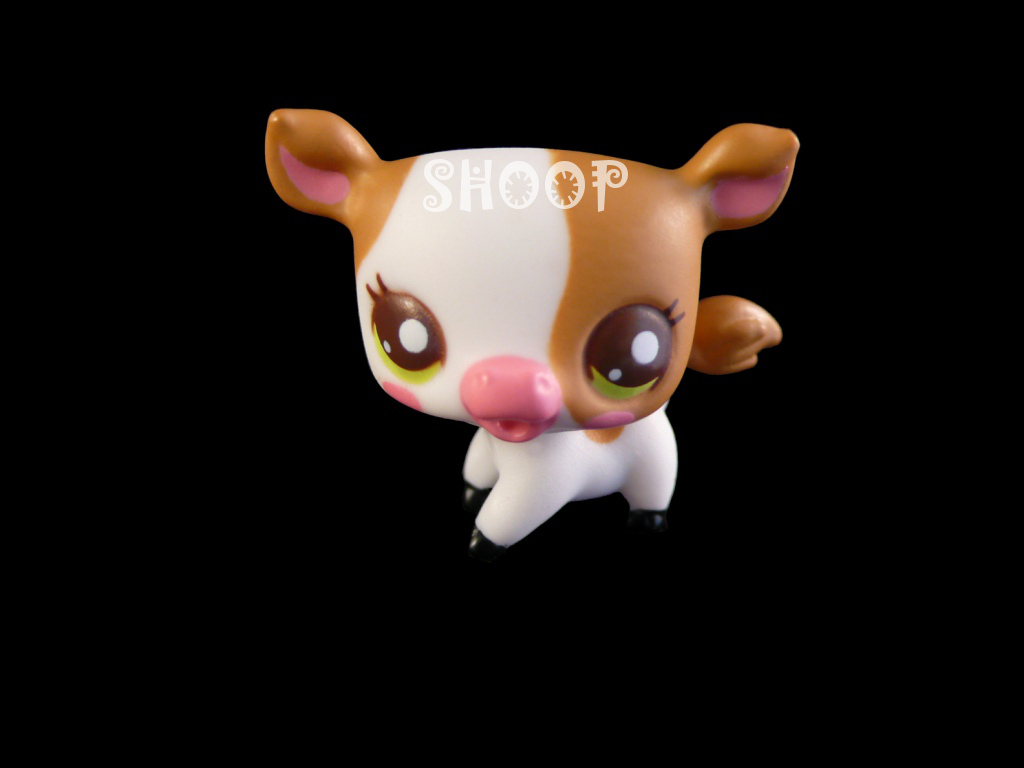 LPS 2506