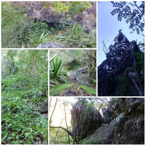 11 bassins sur la Ravine Goyaves (RANDONNÉE)