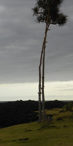 Piscine du puits des Anglais à côté du Baril