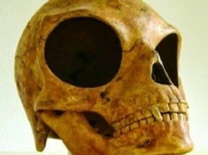 Un mystérieux crâne retrouvé au Danemark... est-ce le crâne d'un extraterrestre