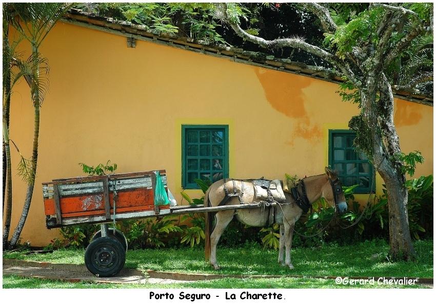 Porto Seguro 2