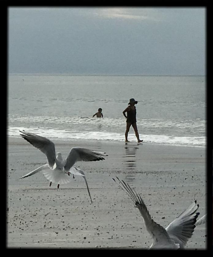 Un amour de chien à Villers sur mer