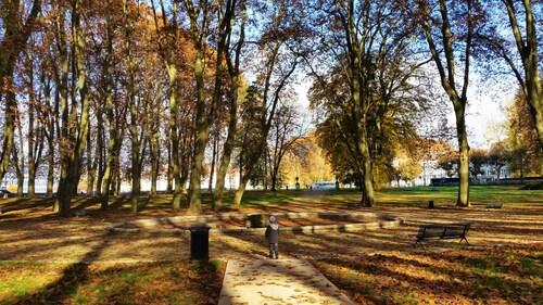 Roue et spirale aux couleurs d'automne