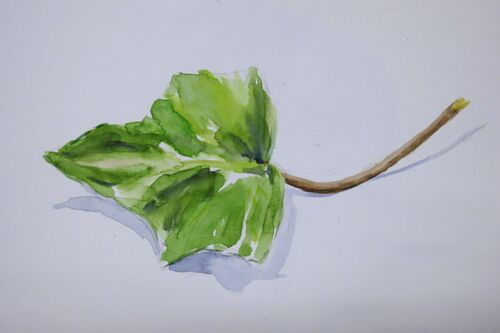 Peinture acrylique, aquarelle...