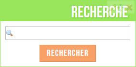 """Champs de texte """"Rechercher"""" & """"Newsletter"""""""