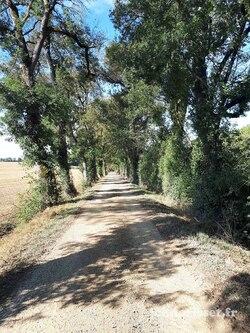 E 54 de La ferme de Tollet à Eauze